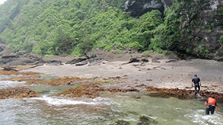 海岸線を攻めるアウトドアスポーツ「コーステアリング」で、南房総の海と川を楽しもう!