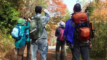 日本一遅い紅葉を楽しむ♪ 紅葉トレッキング