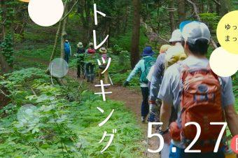 ゆっくり歩く、はじめてのトレッキング ~新緑と海を眺める、春の「米山」~